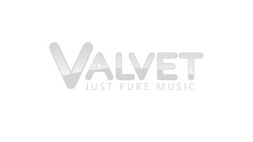 client-logo-valvet